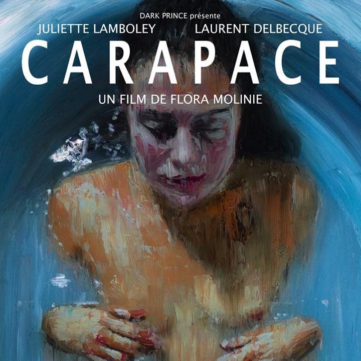 image-carapace_desktop