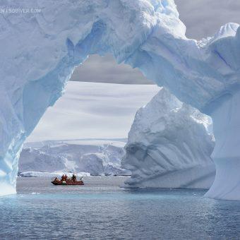 marsel van oosten Nikon Antarctique