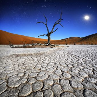Patrick Galibert AfricaTracks Nikon Namibie