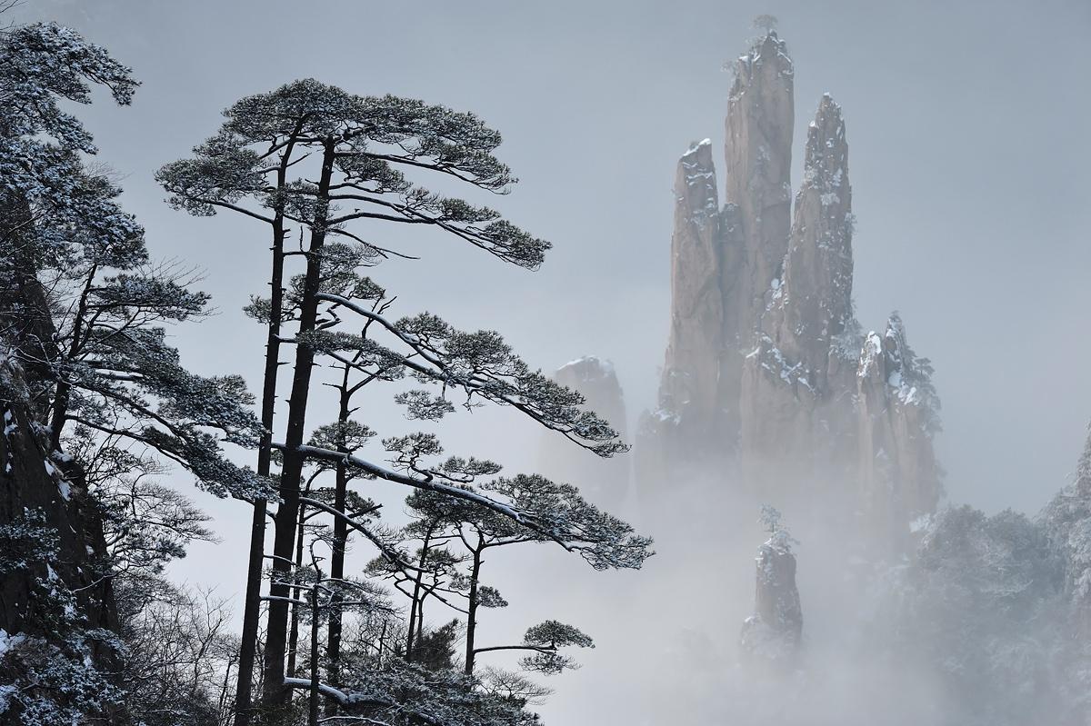 Montagnes du Huangshan (Chine)