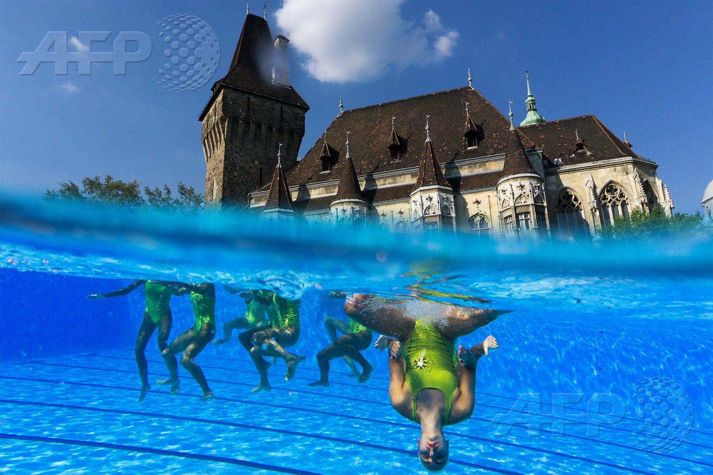 AFP 5 / HONGRIE 20 juillet 2017 - Budapest, Hongrie - Cette photo réalisée grâce à un équipement subaquatique montre des nageuses de natation synchronisée à l'entraînement lors des Championnats du monde de natation. AFP / FRANÇOIS-XAVIER MARIT
