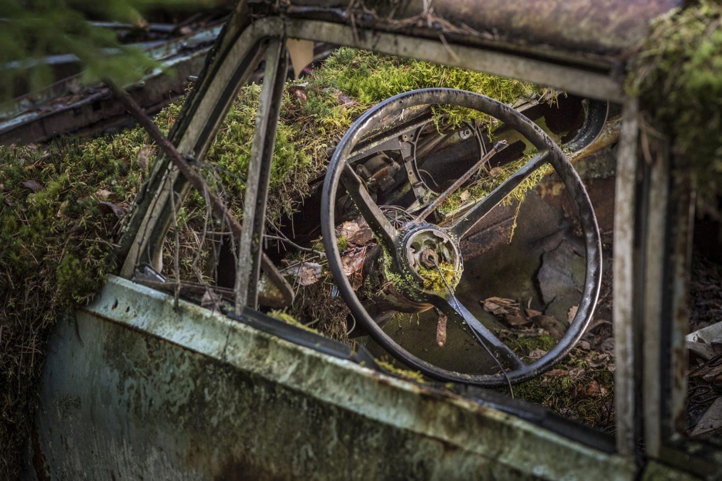 Alberto Ghizzi Panizza : Nikon D810, AF-S VR Micro-NIKKOR 105mm f/2.8G IF-ED