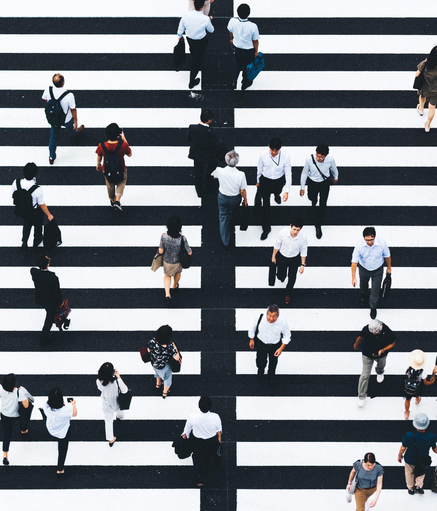 Le Tokyo Zébré de Shokhi Eno