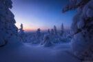 De la Laponie aux îles Lofoten avec Pierre Destribats