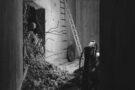 Entre béton et lumière: la dualité en images par Olivier Roche