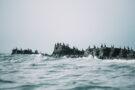 Kirill Umrikhin, lève le voile sur le monde perdu des îles Komandorski