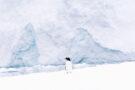 A la découverte de l'Antarctique et de l'Arctique avec Elio Della Valle