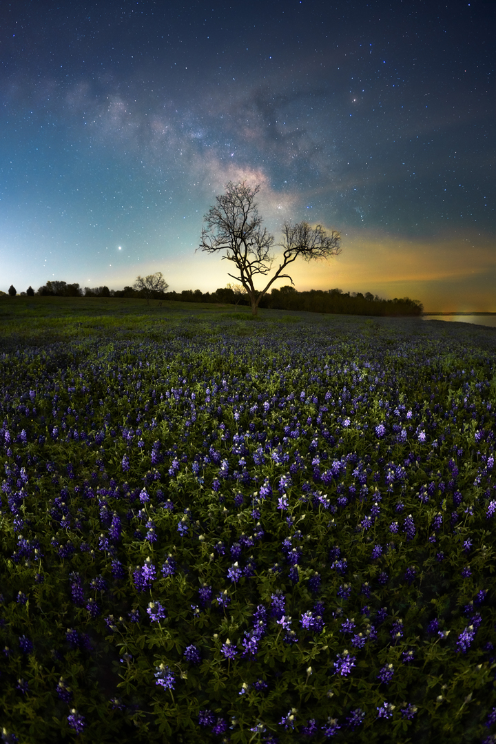 Bard of Blue, North Texas. Sonyu a7RIV, 16mm, 10s, 22 exposure, 6400 iso, f2.8